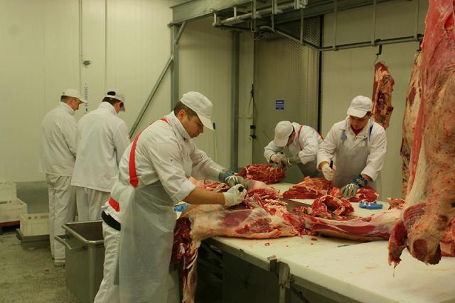 Wydzierżawię zakład mięsny w Rakoniewicach