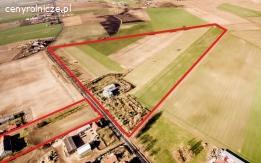 17,5 ha gruntu rolnego z dużym domem koło Wrześni