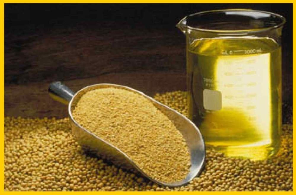 olej sojowy makuch sojowy
