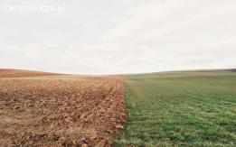 Badanie gleby, zalecenia nawozowe, program wapnowania gleb