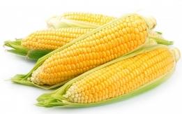 Dostawa kukurydzy