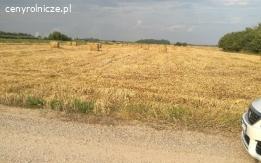 Działka rolna 5ha Przesmyki Mazowieckie