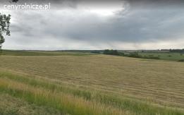 Działka rolna do koszenia (mieszanki traw)