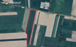 Działka ziemia rolna 4ha koło Żuromina Kuczborka klasa III (3), IV (4) cena do negocjacji