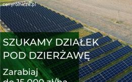 DZIERŻAWA GRUNTU POD FARMY PV, do 15000 zł za 1 ha!!