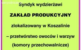 Dzierżawa zakładu produkcyjnego w Dobrzyniu nad Wisłą
