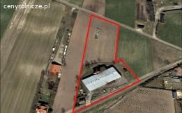 Ferma drobiu z gruntem rolnym Piotrków Tryb. A1