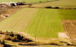 Grunt rolny w okolicach Wrześni