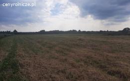 Grunty rolne  - 3,42ha ( 2zł/m2 )