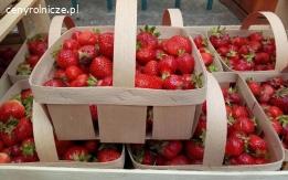 Koszyczki na owoce/warzywa