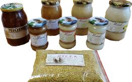 Miód wielokwiatowy - CZERWIEC 2021 - prosto od pszczół