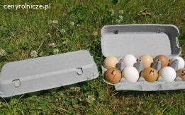 NOWE Wytłaczanki na Jajka, Wytłoczki, Opakowania na 10 Jaj
