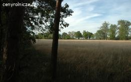 Piękna działka rolno-budowlana na wysokim brzegu Wisły