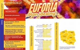 Pszenica ozima EUFORIA C1 materiał siewny