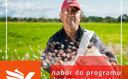 Rolnik szuka fotowoltaiki - Fotowoltaika - Farmy - Dofinansowania