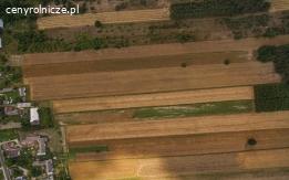 Sprzedam ziemię rolną z młodym lasem- 2,21ha