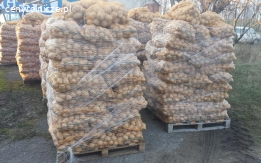 Sprzedam ziemniaki