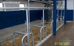 Stanowiska dla bydła