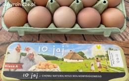Swojskie jajka, jaja od kur z wolnego wybiegu