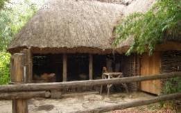 Ukraina. Oddamy stare drewniane budynki do rozbioru, rancza PGR-owskie, wies do zagospodarowania.