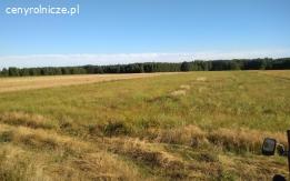 Ziemia rolna na sprzedaż