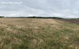 Ziemia rolna Wykroty k.Bolesławca
