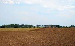 Ziemia rolna ziemię rolną z potencjałem inwest. Lisewo pow.Chełmno