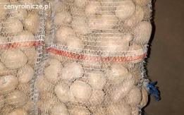 Ziemniak Irga