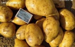 Ziemniaki jadalne od rolnika Gala Madeira